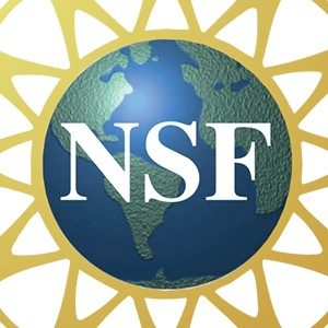 NSF Award on Global Event and Trend Archive Research (GETAR)